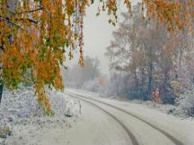 The First Snow in Siberia