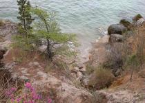 Clear spring waters of Baikal